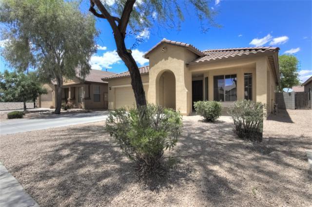 1112 W Desert Glen Drive, San Tan Valley, AZ 85143 (MLS #5930010) :: Occasio Realty