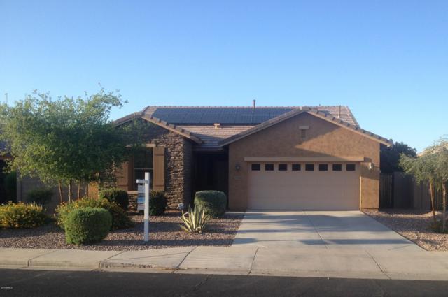 19658 Harrison Street, Buckeye, AZ 85326 (MLS #5930019) :: Occasio Realty