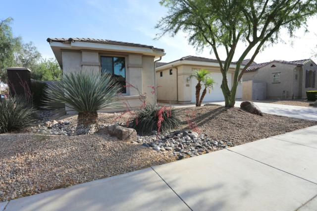16190 W Monterosa Street, Goodyear, AZ 85395 (MLS #5930025) :: The Kenny Klaus Team
