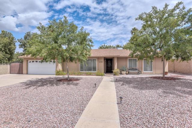 110 E Joan D Arc Avenue, Phoenix, AZ 85022 (MLS #5930035) :: The Kenny Klaus Team