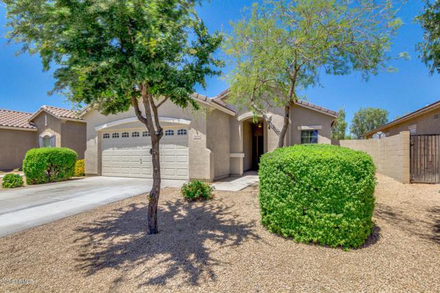 11634 W Mountain View Drive, Avondale, AZ 85323 (MLS #5930040) :: Nate Martinez Team