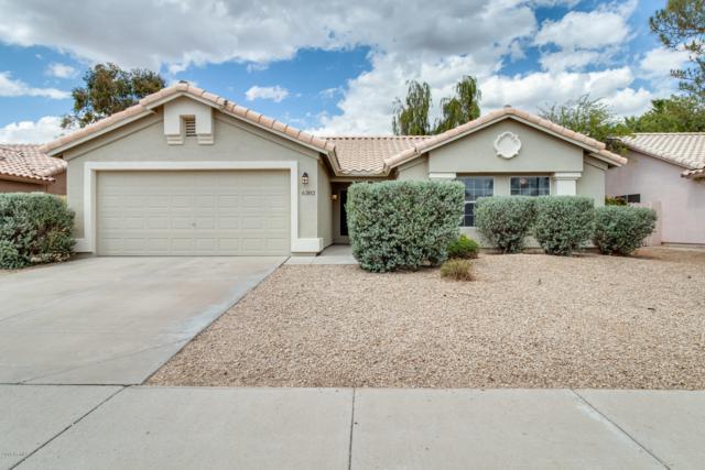6382 W Potter Drive, Glendale, AZ 85308 (MLS #5930045) :: The Property Partners at eXp Realty
