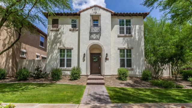29019 N 124TH Drive, Peoria, AZ 85383 (MLS #5930059) :: Nate Martinez Team