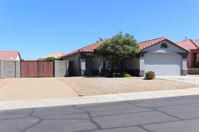 10536 W Via Montoya Drive, Peoria, AZ 85383 (MLS #5930065) :: Nate Martinez Team