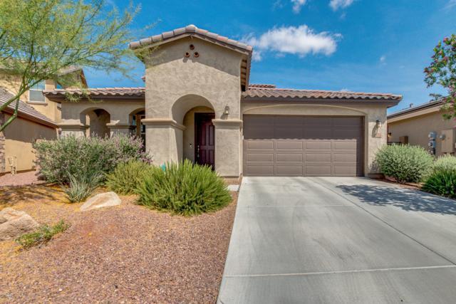 9772 W Sands Drive, Peoria, AZ 85383 (MLS #5930073) :: Team Wilson Real Estate