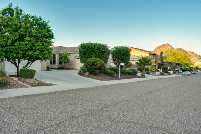 6616 W Brookhart Way, Phoenix, AZ 85083 (MLS #5930076) :: CC & Co. Real Estate Team