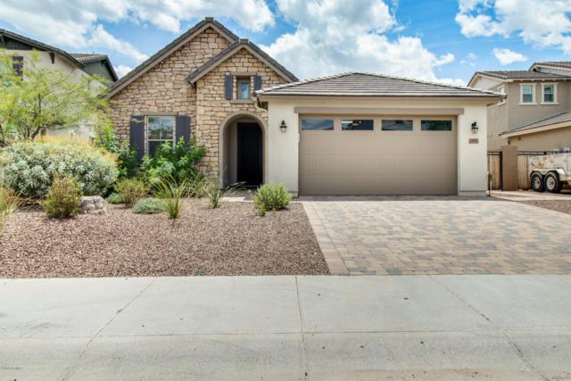 10021 W Via Montoya Drive, Peoria, AZ 85383 (MLS #5930080) :: Homehelper Consultants