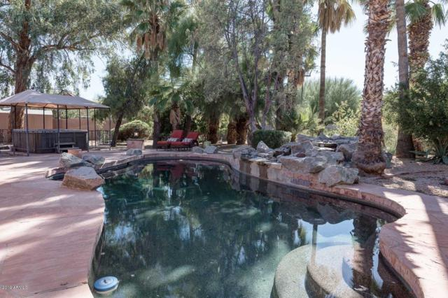 11020 N 73RD Street, Scottsdale, AZ 85260 (MLS #5930082) :: CC & Co. Real Estate Team