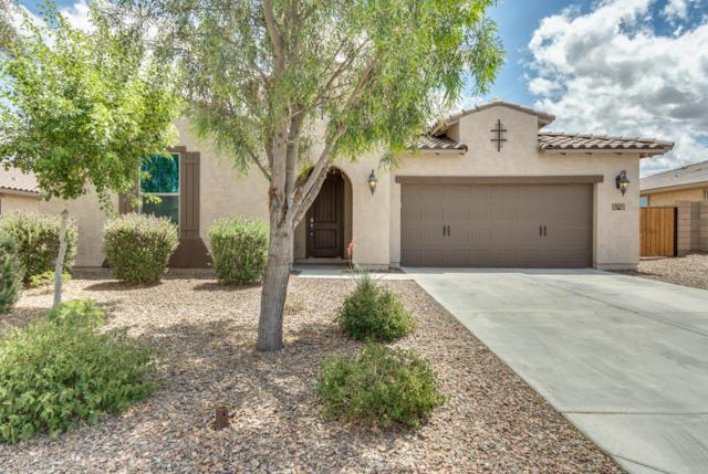 18619 W Glenrosa Avenue, Goodyear, AZ 85395 (MLS #5930095) :: Riddle Realty