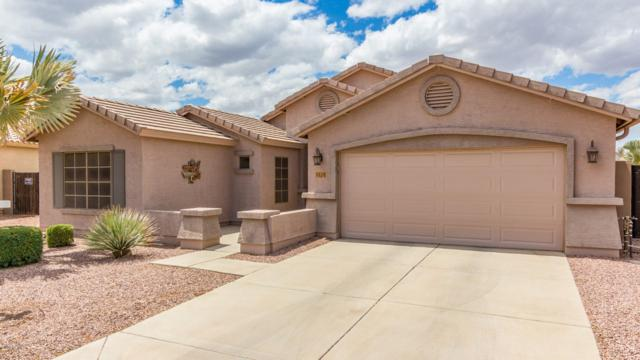 6112 S 45TH Glen, Laveen, AZ 85339 (MLS #5930107) :: Home Solutions Team