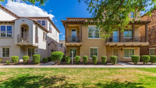 3642 E Horace Drive, Gilbert, AZ 85296 (MLS #5930122) :: My Home Group