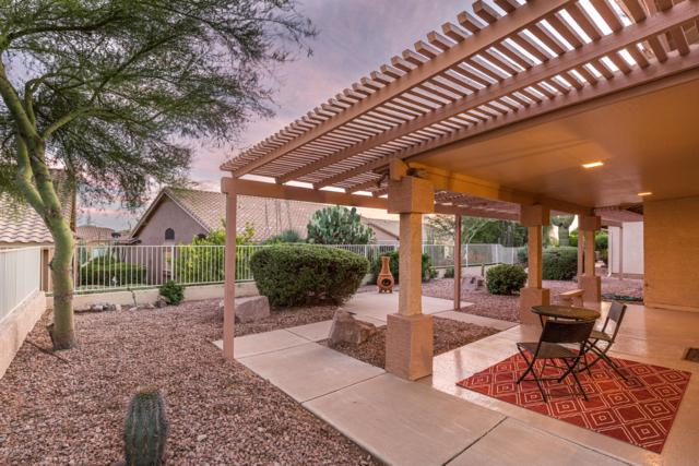 8423 E Golden Cholla Drive, Gold Canyon, AZ 85118 (MLS #5930128) :: The Kenny Klaus Team