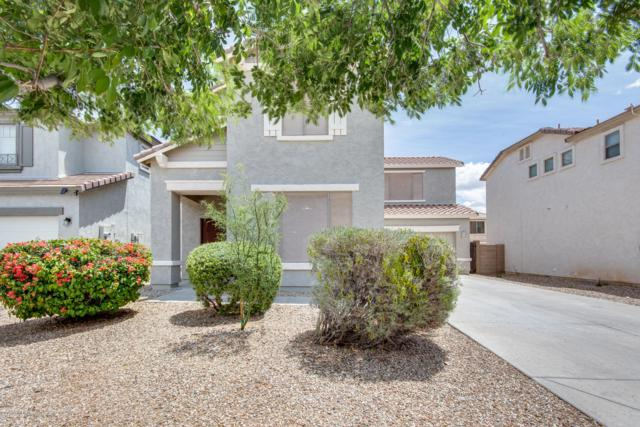 14695 N 176TH Avenue, Surprise, AZ 85388 (MLS #5930137) :: Occasio Realty