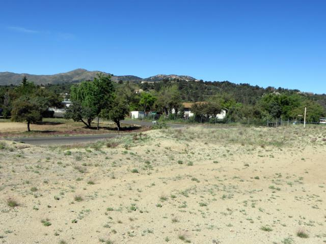17026 W Rich Hill Road, Peeples Valley, AZ 86332 (MLS #5930138) :: The Property Partners at eXp Realty