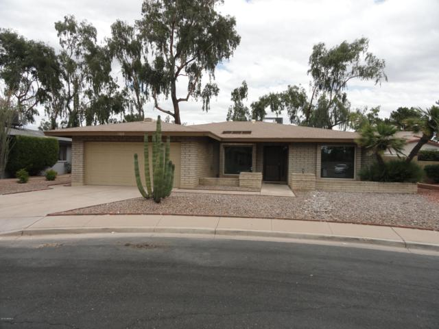 1669 S Ash, Mesa, AZ 85202 (MLS #5930140) :: CC & Co. Real Estate Team