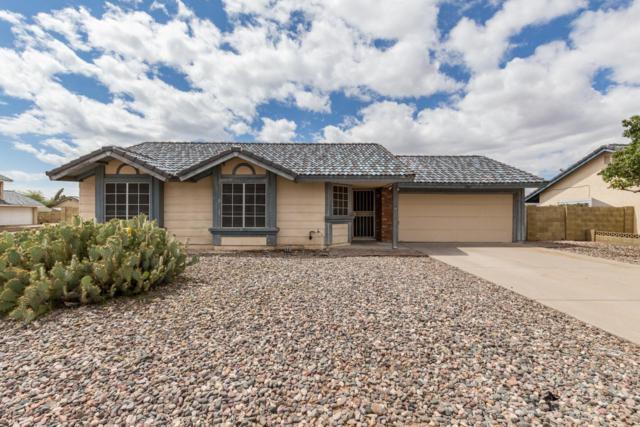 7921 W Columbine Drive, Peoria, AZ 85381 (MLS #5930143) :: Nate Martinez Team