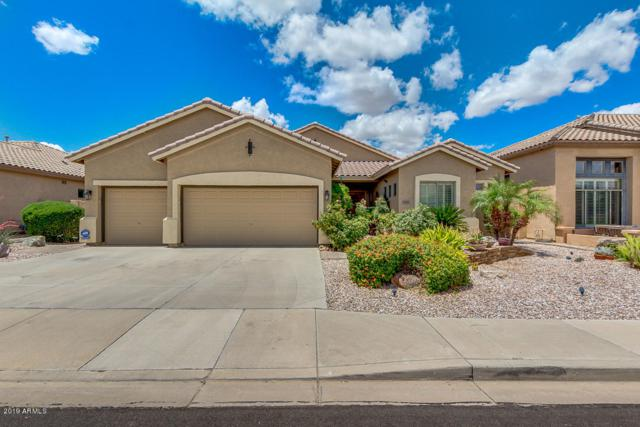 6948 S Forest Avenue, Gilbert, AZ 85298 (MLS #5930146) :: The Property Partners at eXp Realty