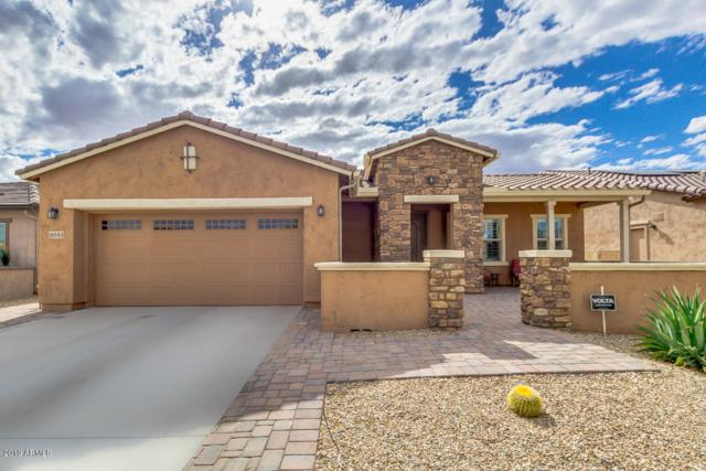 16544 S 179TH Lane, Goodyear, AZ 85338 (MLS #5930151) :: Occasio Realty