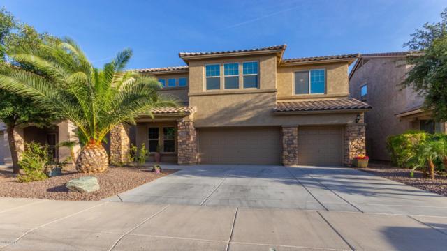 17961 W Diana Avenue, Waddell, AZ 85355 (MLS #5930155) :: Occasio Realty