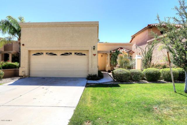 9520 N 105th Street, Scottsdale, AZ 85258 (MLS #5930156) :: The Property Partners at eXp Realty