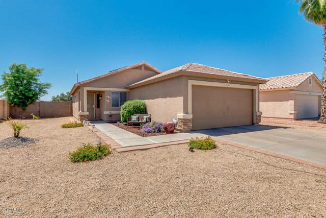 16902 N 158TH Avenue, Surprise, AZ 85374 (MLS #5930171) :: Occasio Realty