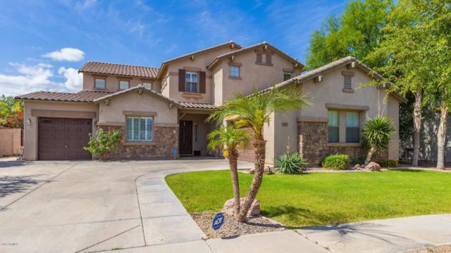 3107 E Blue Ridge Way, Gilbert, AZ 85298 (MLS #5930175) :: Revelation Real Estate
