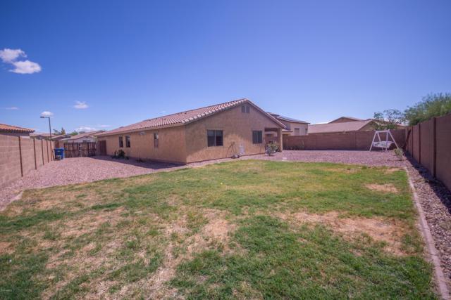 25689 W Blue Sky Way, Buckeye, AZ 85326 (MLS #5930176) :: Occasio Realty