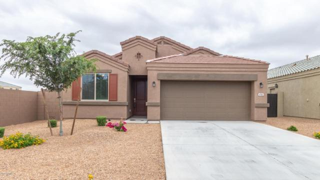 4705 E Sodalite Street, San Tan Valley, AZ 85143 (MLS #5930178) :: Openshaw Real Estate Group in partnership with The Jesse Herfel Real Estate Group