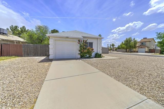 3284 N Ash Circle, Chandler, AZ 85224 (MLS #5930198) :: The Property Partners at eXp Realty