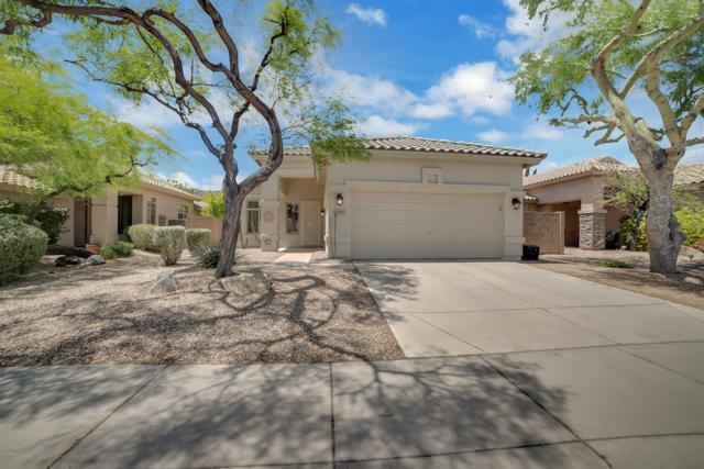 23440 N 21ST Place, Phoenix, AZ 85024 (MLS #5930212) :: Occasio Realty