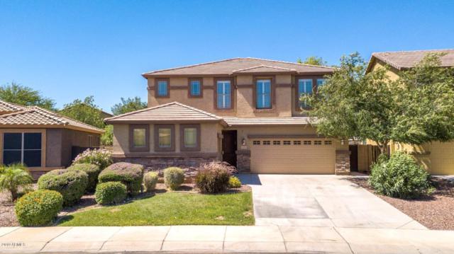 11744 W Villa Hermosa Lane, Sun City, AZ 85373 (MLS #5930213) :: Team Wilson Real Estate