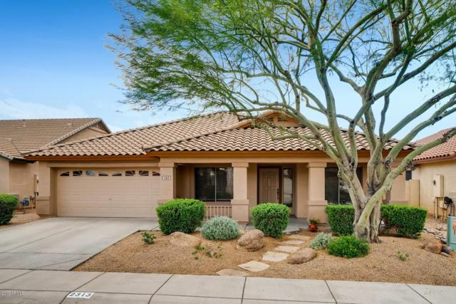 2313 W Bent Tree Drive, Phoenix, AZ 85085 (MLS #5930219) :: Keller Williams Realty Phoenix