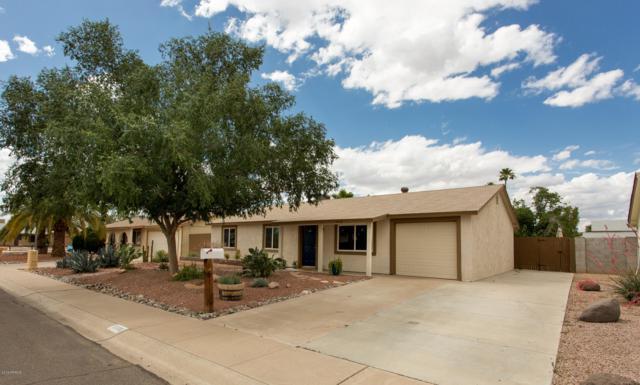 3608 E Surrey Avenue, Phoenix, AZ 85032 (MLS #5930220) :: Occasio Realty