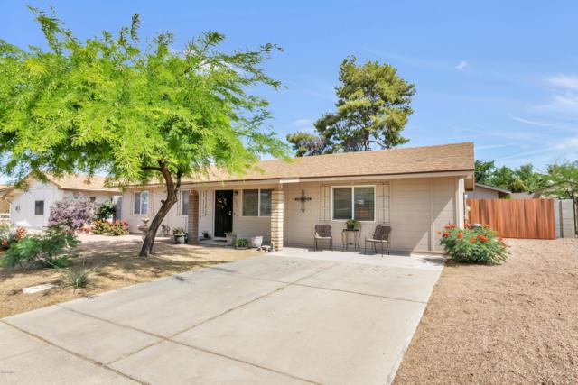 3506 W Detroit Street, Chandler, AZ 85226 (MLS #5930221) :: The Property Partners at eXp Realty
