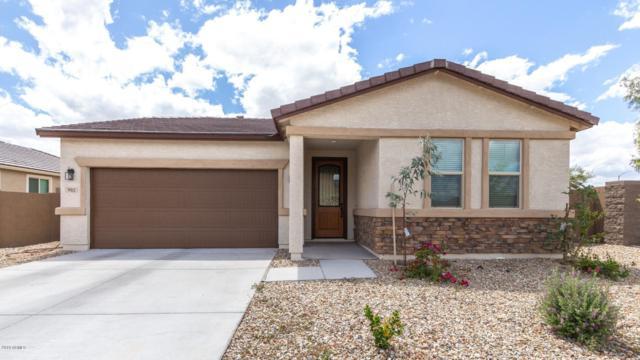 902 S 9TH Street, Avondale, AZ 85323 (MLS #5930222) :: Nate Martinez Team
