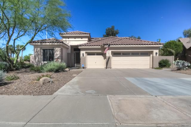 1643 S Navajo Way, Chandler, AZ 85286 (MLS #5930229) :: The Property Partners at eXp Realty