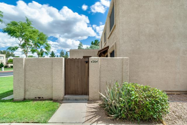 4204 N 81ST Street, Scottsdale, AZ 85251 (MLS #5930236) :: The Kenny Klaus Team
