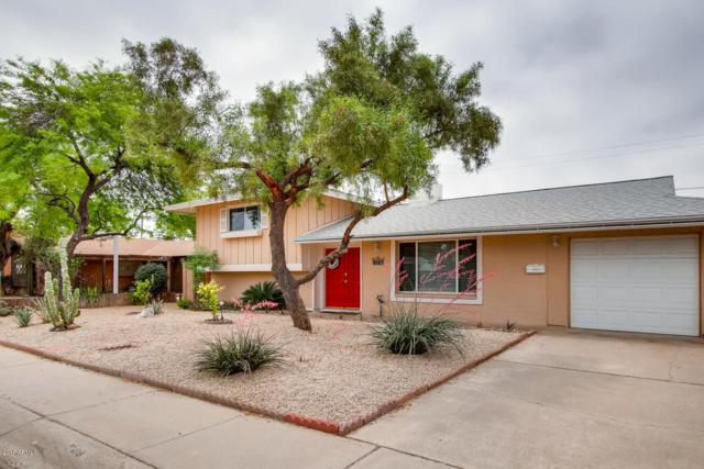 8529 E Edgemont Avenue, Scottsdale, AZ 85257 (MLS #5930270) :: CC & Co. Real Estate Team