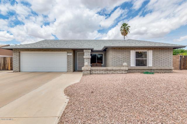 11310 N 61ST Avenue, Glendale, AZ 85304 (MLS #5930281) :: Nate Martinez Team