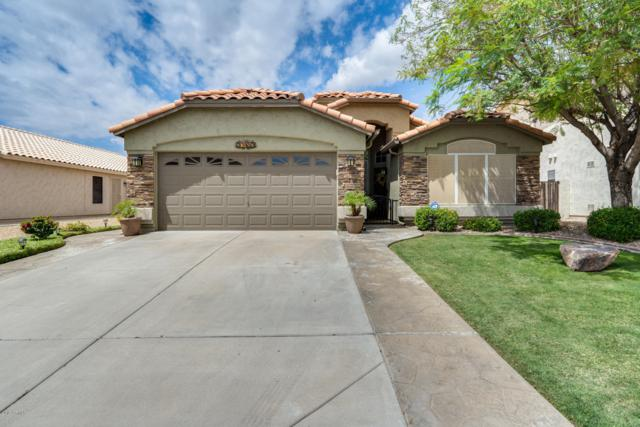 20452 N 96TH Lane, Peoria, AZ 85382 (MLS #5930292) :: Nate Martinez Team