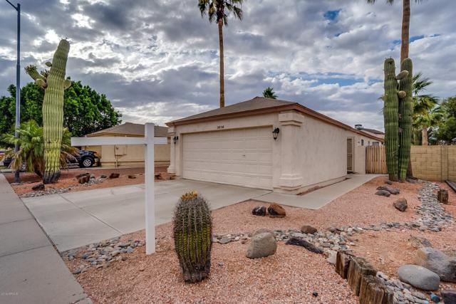 3614 W Camino Del Rio, Glendale, AZ 85310 (MLS #5930299) :: The Garcia Group