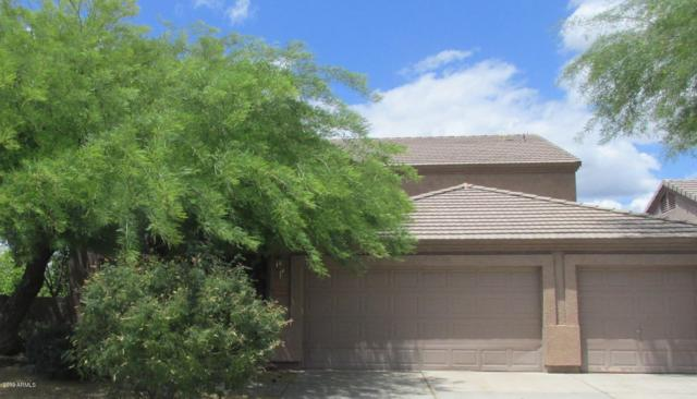 26260 N 46TH Street, Phoenix, AZ 85050 (MLS #5930301) :: The Property Partners at eXp Realty