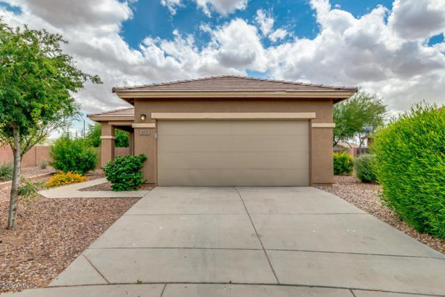 1605 W Owens Way, Anthem, AZ 85086 (MLS #5930306) :: Riddle Realty