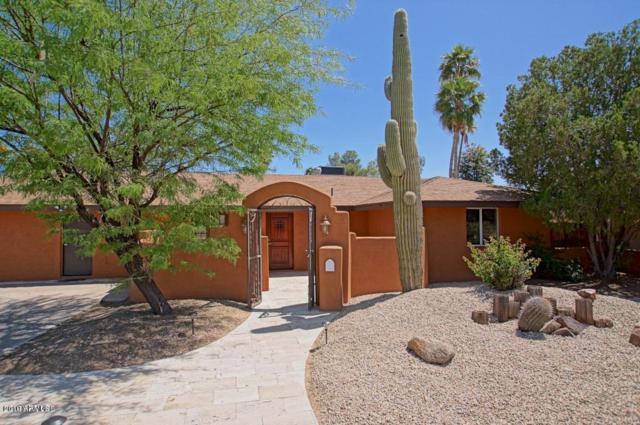 11215 N 38TH Place, Phoenix, AZ 85028 (MLS #5930312) :: The Kenny Klaus Team
