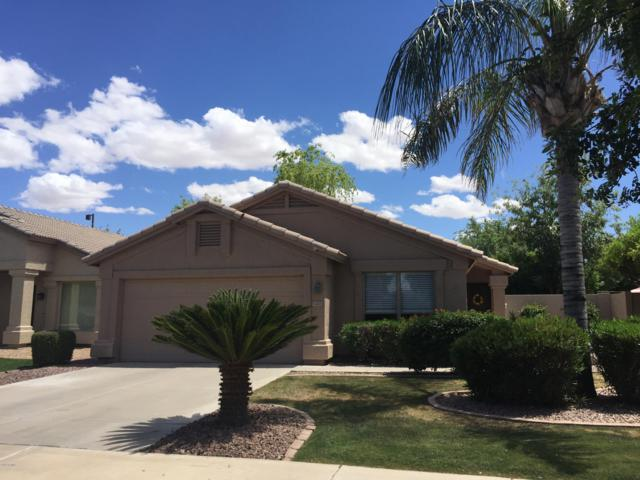 1443 W Mead Drive, Chandler, AZ 85248 (MLS #5930314) :: CC & Co. Real Estate Team