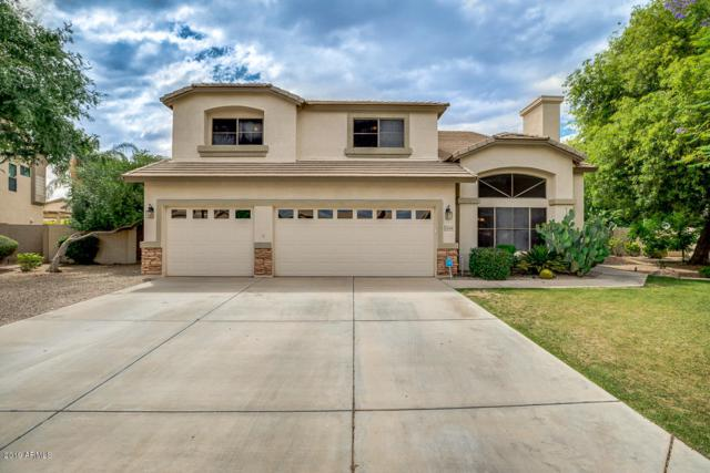 6254 S Gold Leaf Place, Chandler, AZ 85249 (MLS #5930323) :: Phoenix Property Group