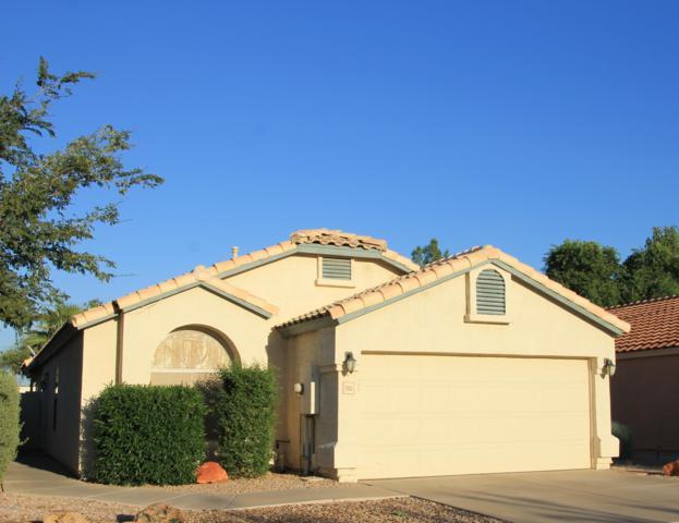 2401 S Karen Drive, Chandler, AZ 85286 (#5930333) :: Gateway Partners | Realty Executives Tucson Elite