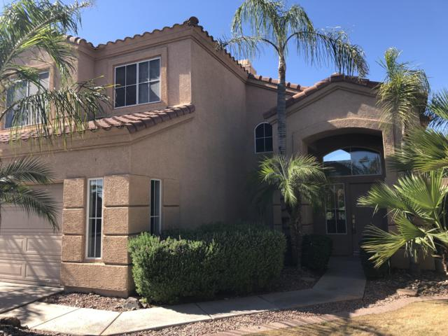 846 W Rockrose Way, Chandler, AZ 85248 (MLS #5930335) :: CC & Co. Real Estate Team