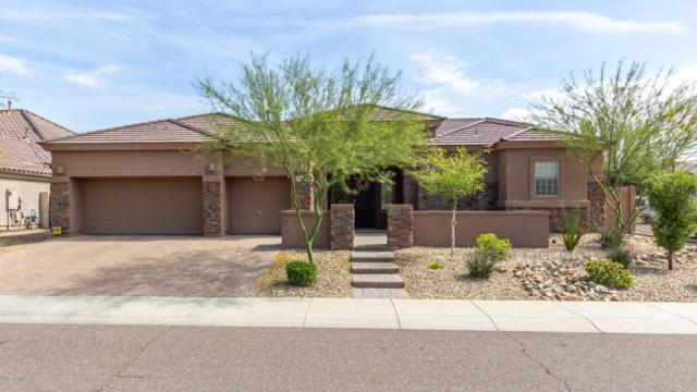 5536 W Straight Arrow Lane, Phoenix, AZ 85083 (MLS #5930361) :: Team Wilson Real Estate