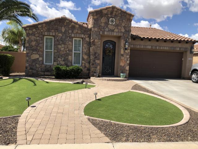 2433 E Dogwood Drive, Chandler, AZ 85286 (MLS #5930364) :: Riddle Realty